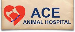 ACE Animal Hospital